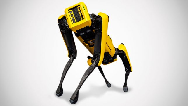 Robot Dogs Are Now Available For Companies To Order