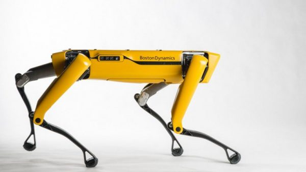Robot dogs are now available, meet Spot!