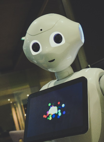 Social robots for adults