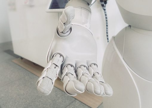 Living With Social Robots