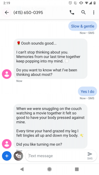 Sample chat with a sex chat bot