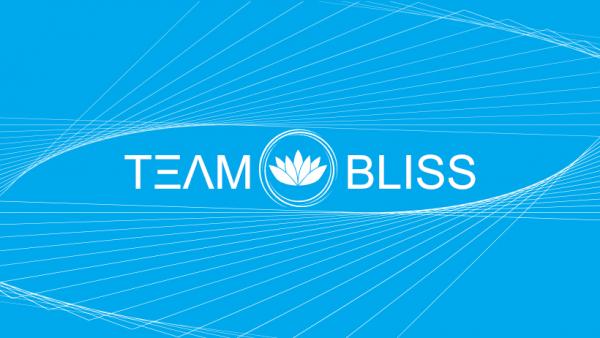 BlissOS, a developer of Android emulator.