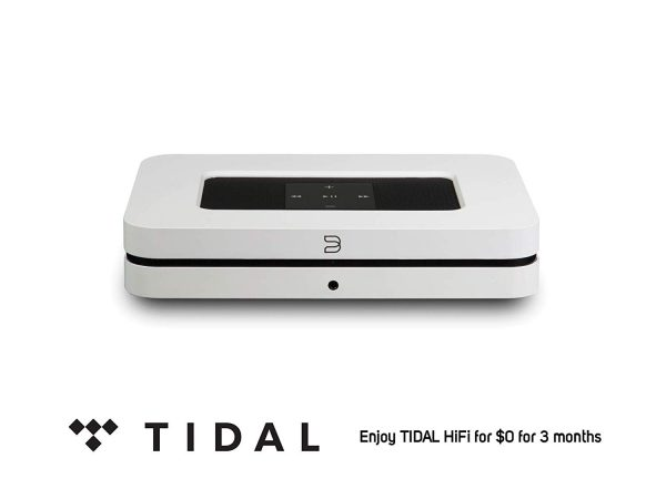 enjoy free 3 months tidal music with this