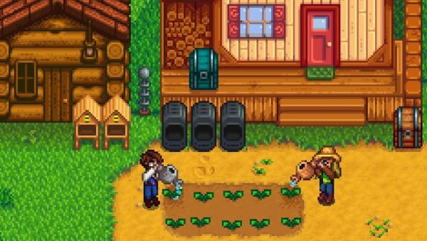 Two players in stardew valley