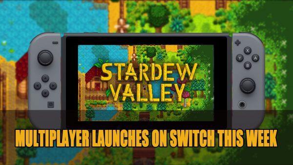 Stardew Valley on Nintendo Switch