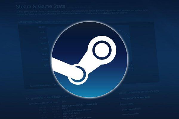 Steam, a digital platform for downloading games.