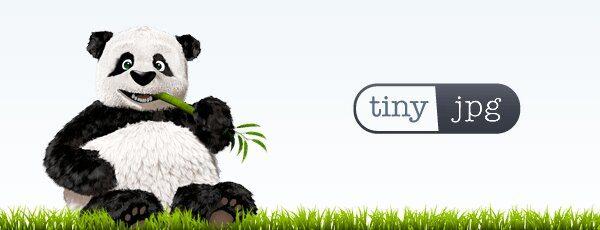 TinyJPG Image Converter Logo