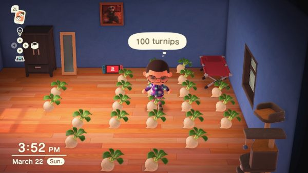 Animal Crossing Selling Turnips