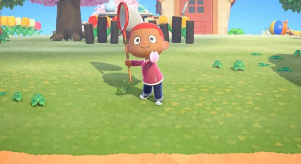 Animal Crossing Catching Cherry Blossom Petals
