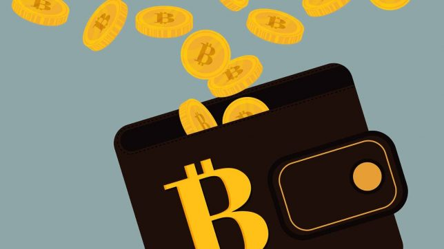 Best Bitcoin Wallets for Safe and Secure Transactions