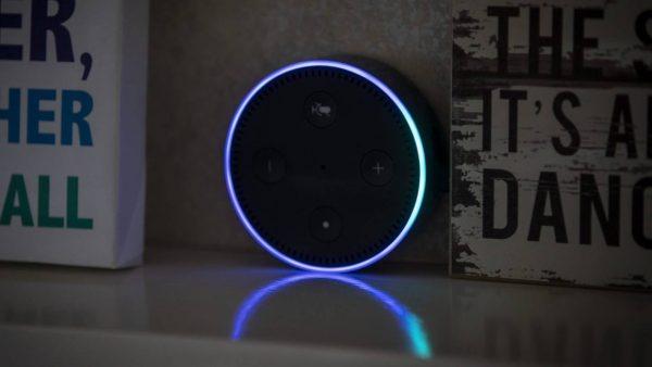 Delete Alexa Recordings Manually