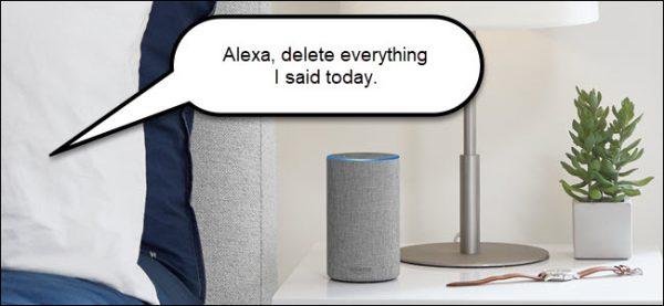 Alexa Voice Command to Delete Recordings