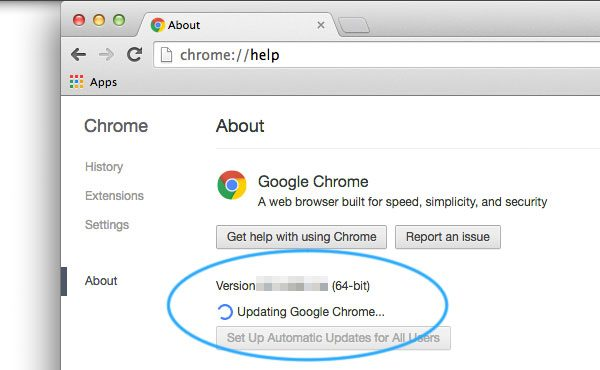 Update your Chrome