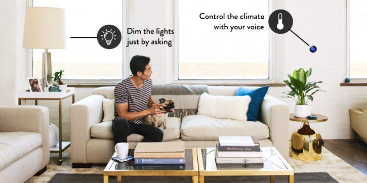 Set Up Alexa Smart Home: Connect Lights, Appliances, Etc.