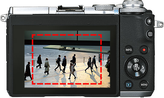 LCD Screen & Connectivity
