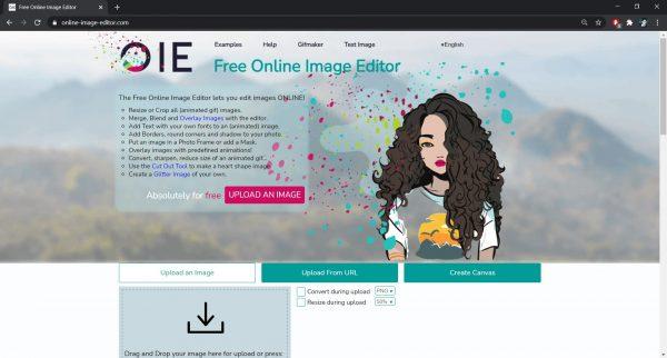 Online Image Editor software