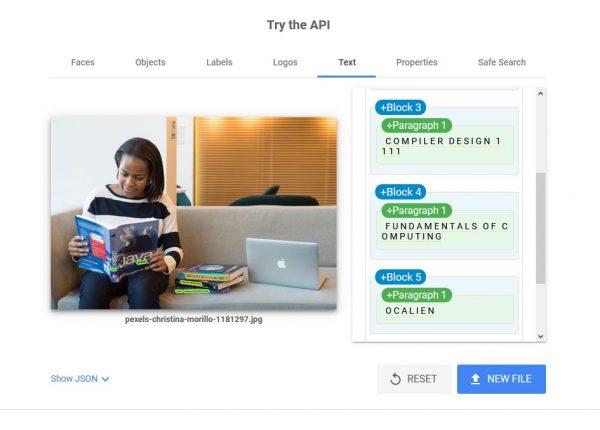 texts google vision api