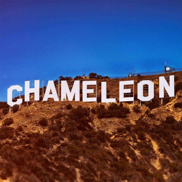 Chameleon Campside Media